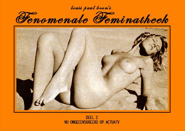 Fenomenale Feminatheek, deel 2 - Poster klein